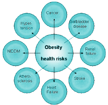 the dangers and health issues of childhood obesity Childhood obesity is a complex health issue  high blood pressure and high  cholesterol, which are risk factors for cardiovascular disease.